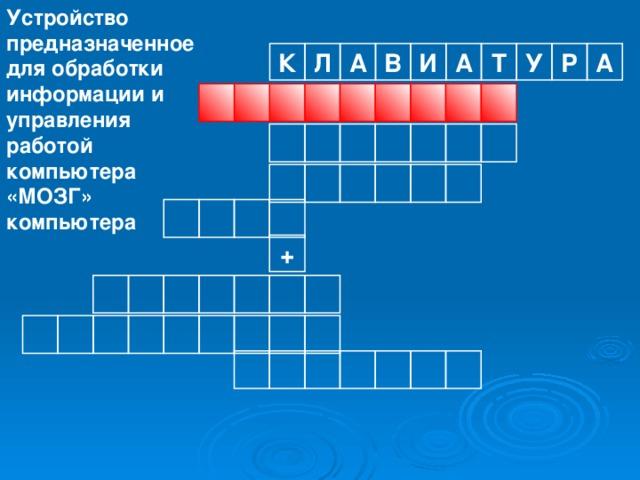 Устройство предназначенное для обработки информации и управления работой компьютера «МОЗГ» компьютера Р К А Л А В И А Т У                  +