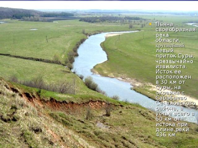 Пьяна своеобразная река области, крупнейший левый приток Суры, чрезвычайно извилиста. Исток ее расположен в 30 км от Суры, на окраине с. Сарабаево Сеченовского района, а устье всего в 60 км от истока при длине реки 436 км.