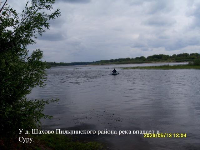У д. Шахово Пильнинского района река впадает в Суру.
