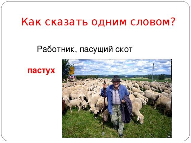 Как сказать одним словом? Работник, пасущий скот пастух