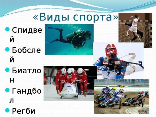 «Виды спорта»
