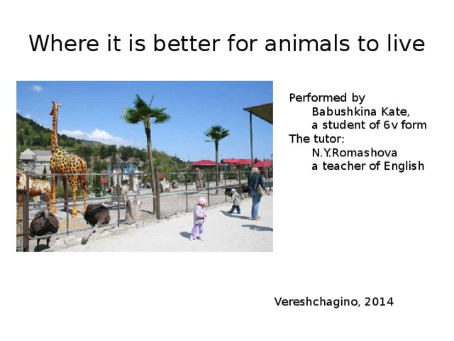 Where it is better for animals to live Performed by  Babushkina Kate,  a student of 6v form The tutor:  N.Y.Romashova  a teacher of English Vereshchagino, 2014