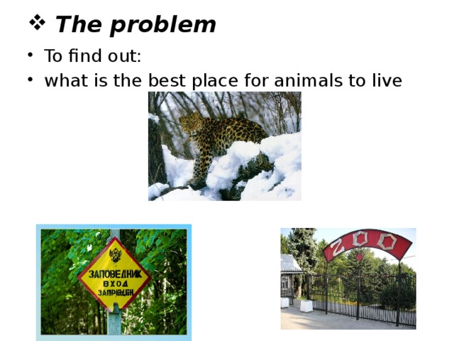 The problem To find out: what is the best place for animals to live
