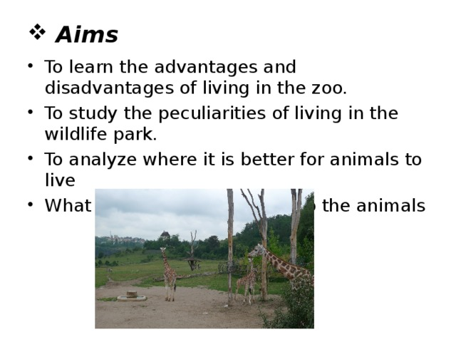 Aims To learn the advantages and disadvantages of living in the zoo. To study the peculiarities of living in the wildlife park. To analyze where it is better for animals to live What people should do to help the animals