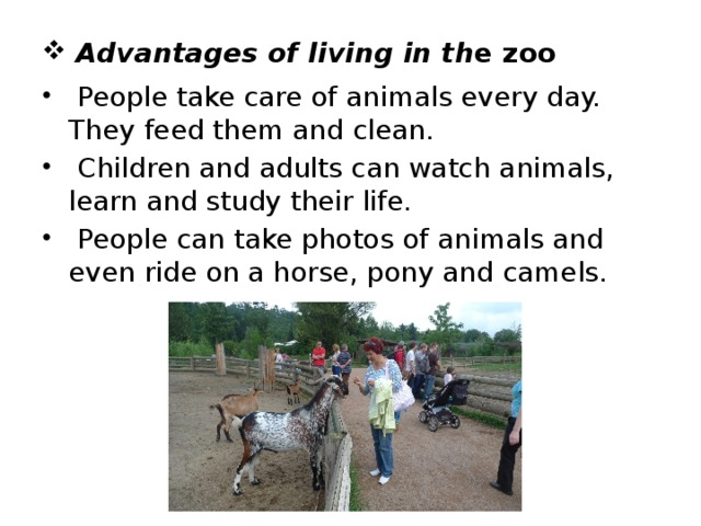 Advantages of living in th e zoo  People take care of animals every day. They feed them and clean.  Children and adults can watch animals, learn and study their life.  People can take photos of animals and even ride on a horse, pony and camels.