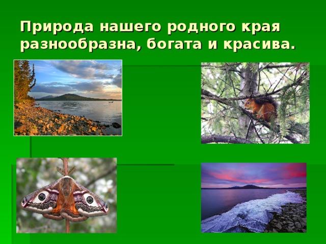 Природа нашего родного края разнообразна, богата и красива.