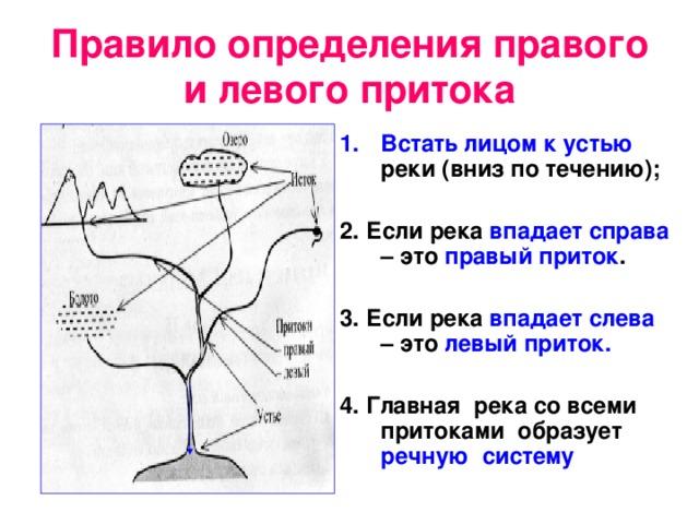 Правило определения правого и левого притока Встать лицом к устью реки (вниз по течению);  2. Если река впадает  справа – это правый  приток .  3. Если река впадает слева – это левый приток.  4.  Главная река со всеми притоками образует речную систему