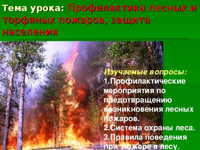 Тема урока: Профилактика лесных и торфяных пожаров, защита населения Изучаемые вопросы: 1.Профилактические мероприятия по предотвращению возникновения лесных пожаров. 2.Система охраны леса. 3.Правила поведения при пожаре в лесу.
