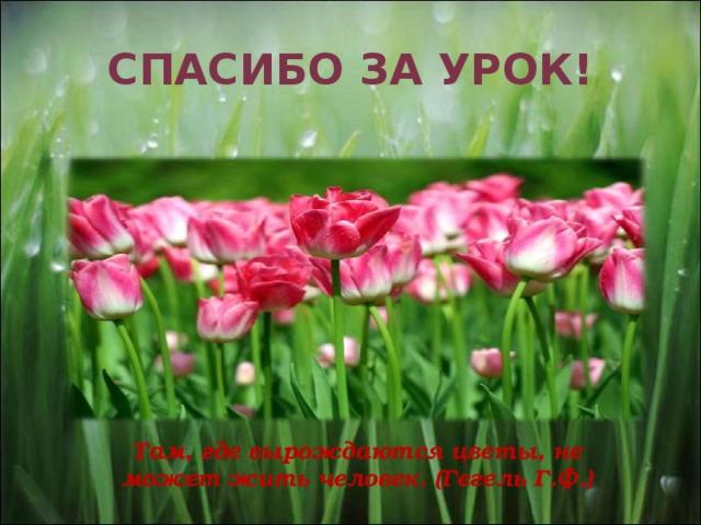 Спасибо за урок!   Там, где вырождаются цветы, не может жить человек. (Гегель Г.Ф.)
