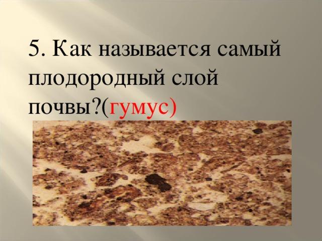 5. Как называется самый плодородный слой почвы?( гумус)