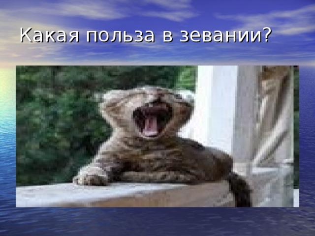 Какая польза в зевании?