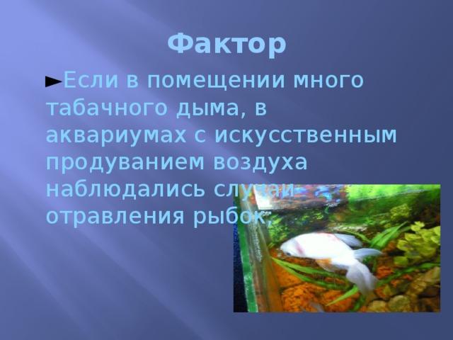 Фактор ► Если в помещении много табачного дыма, в аквариумах с искусственным продуванием воздуха наблюдались случаи отравления рыбок;