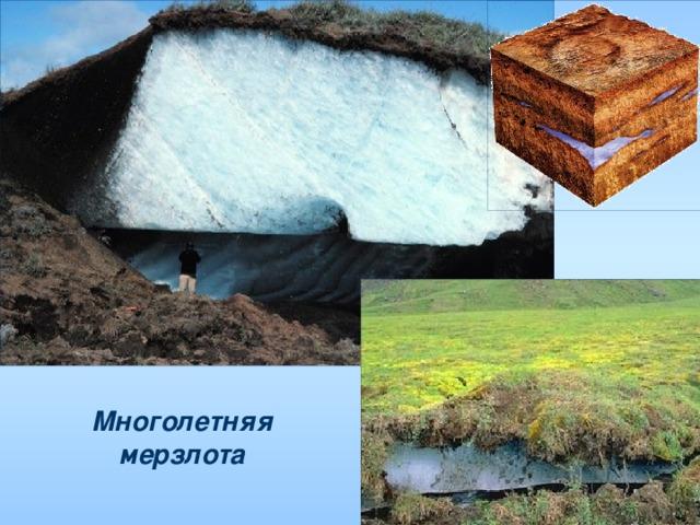 картинки многолетняя мерзлота россии покрытия