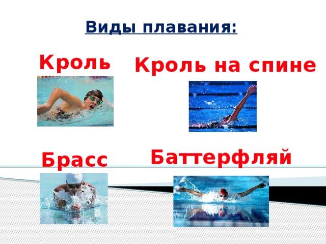 Виды плаваний в картинках
