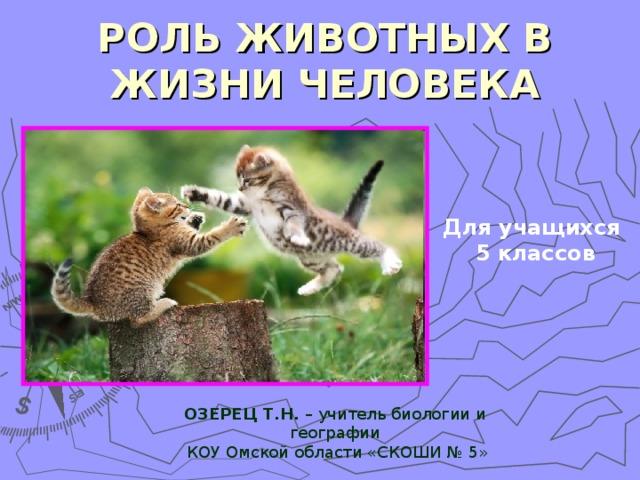 Реферат значение животных в жизни человека 4252