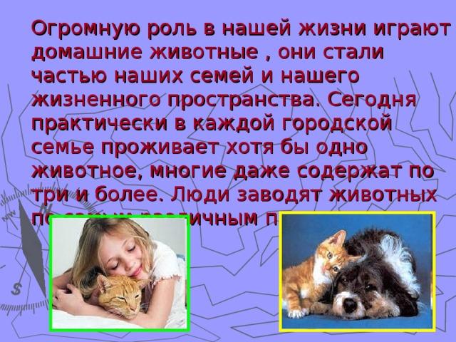 Доклад на тему люди и животные 698