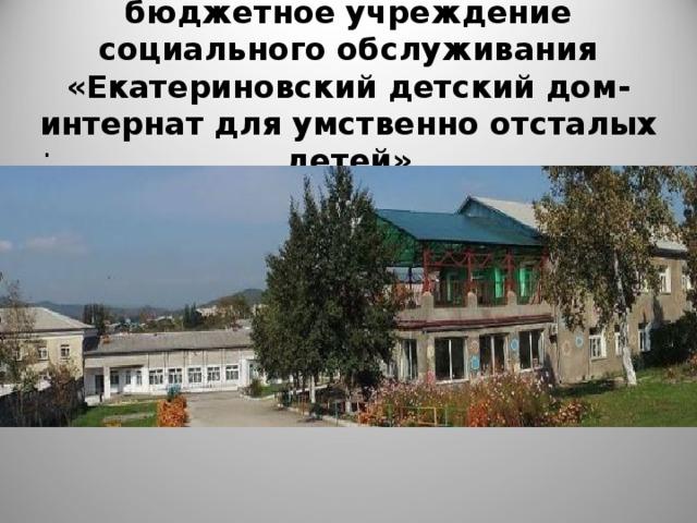 Краевое государственное бюджетное учреждение социального обслуживания «Екатериновский детский дом-интернат для умственно отсталых детей» .