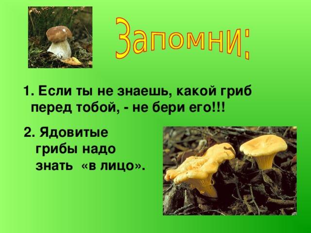 1. Если ты не знаешь, какой гриб перед тобой, - не бери его!!! 2. Ядовитые грибы надо знать «в лицо».