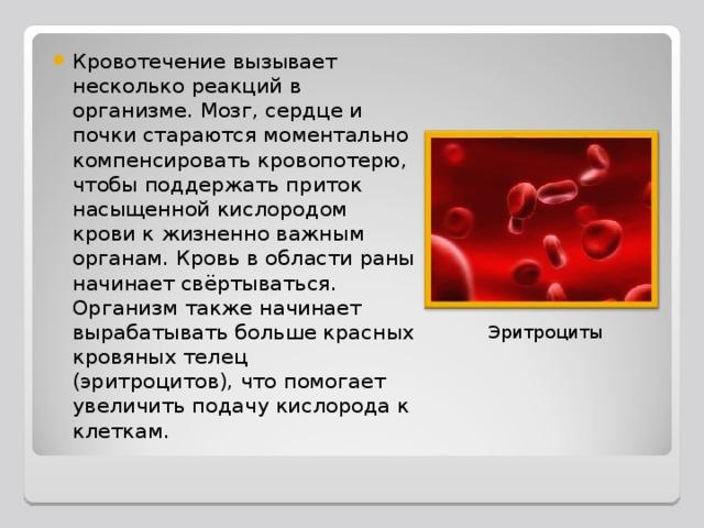 Кровотечение вызывает несколько реакций в организме. Мозг, сердце и почки стараются моментально компенсировать кровопотерю, чтобы поддержать приток насыщенной кислородом крови к жизненно важным органам. Кровь в области раны начинает свёртываться. Организм также начинает вырабатывать больше красных кровяных телец (эритроцитов), что помогает увеличить подачу кислорода к клеткам.