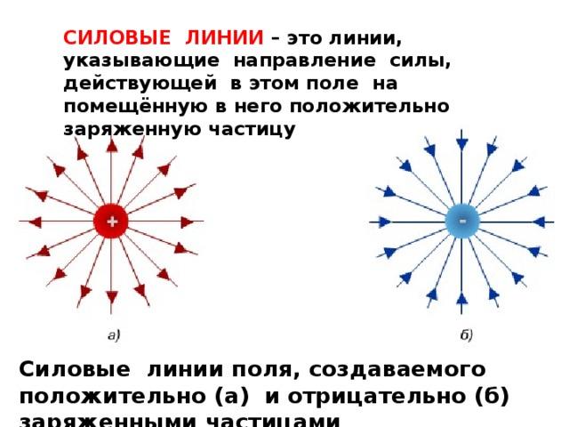 СИЛОВЫЕ ЛИНИИ – это линии, указывающие направление силы, действующей в этом поле на помещённую в него положительно заряженную частицу Силовые линии поля, создаваемого положительно (а) и отрицательно (б) заряженными частицами