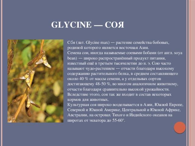 Glycine — Соя Со́я (лат. Glycine max) — растение семейства бобовых, родиной которого является восточная Азия. Семена сои, иногда называемые соевыми бобами (от англ. soya bean) — широко распространённый продукт питания, известный ещё в третьем тысячелетии до н. э. Сою часто называют чудо-растением — отчасти благодаря высокому содержанию растительного белка, в среднем составляющего около 40 % от массы семени, а у отдельных сортов достигающему 48-50 %, во многом аналогичном животному, отчасти благодаря сравнительно высокой урожайности. Вследствие этого, соя так же входит в состав некоторых кормов для животных. Культурная соя широко возделывается в Азии, Южной Европе, Северной и Южной Америке, Центральной и Южной Африке, Австралии, на островах Тихого и Индийского океанов на широтах от экватора до 55-60°.
