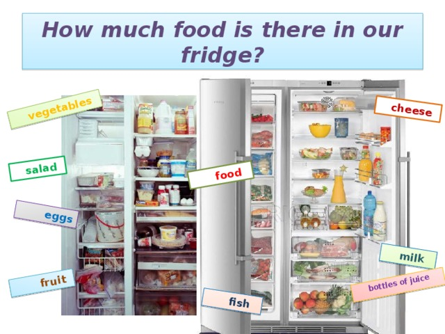 vegetables  eggs  fruit  fish  milk  bottles of juice  salad  cheese  food How much food is there in our fridge?