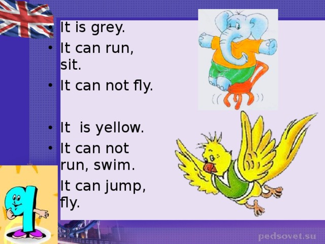 It is grey. It can run, sit. It can not fly.  It is yellow. It can not run, swim. It can jump, fly.