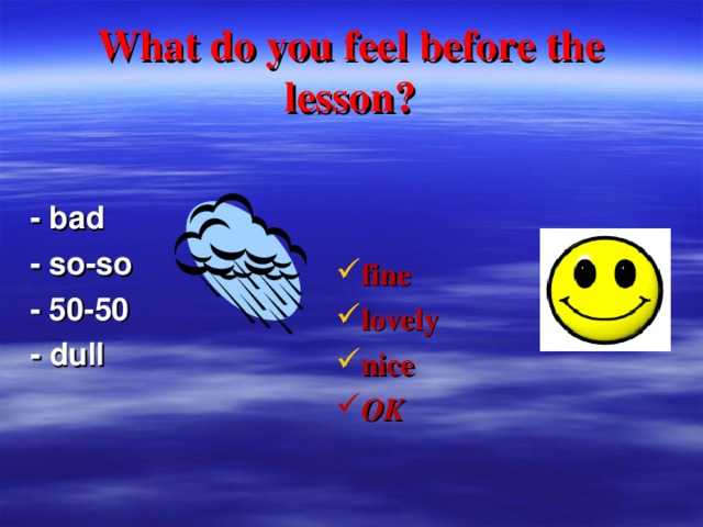 What do you feel before the lesson? - bad - so-so - 50-50 - dull fine lovely nice OK
