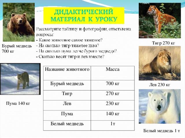 Тигр 270 кг Бурый медведь 700 кг Название животного Бурый медведь Масса Тигр 700 кг 270 кг Лев Пума 230 кг Белый медведь 140 кг 1т Лев 230 кг Пума 140 кг Белый медведь 1 т