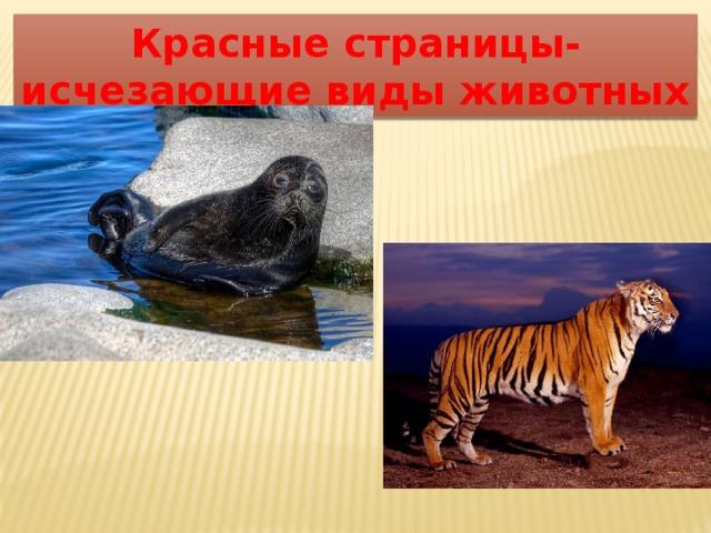 Красные страницы- исчезающие виды животных