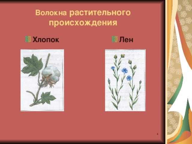 Волокна растительного происхождения Хлопок Лен