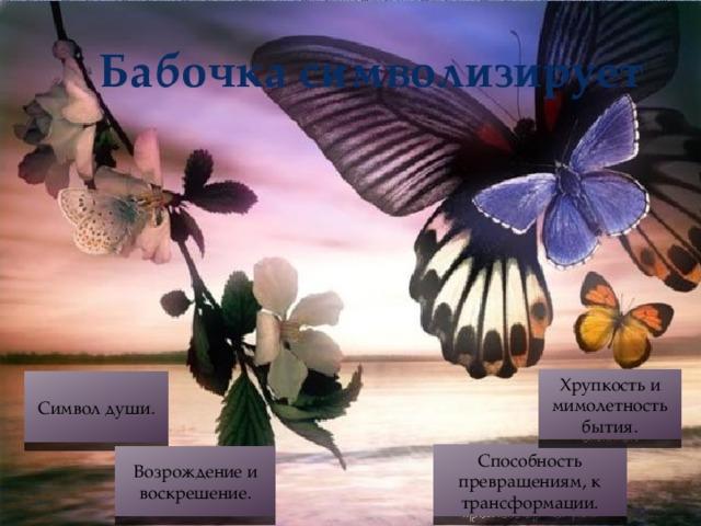 Бабочка символизирует Хрупкость и мимолетность бытия. Символ души. Способность превращениям, к трансформации. Возрождение и воскрешение.