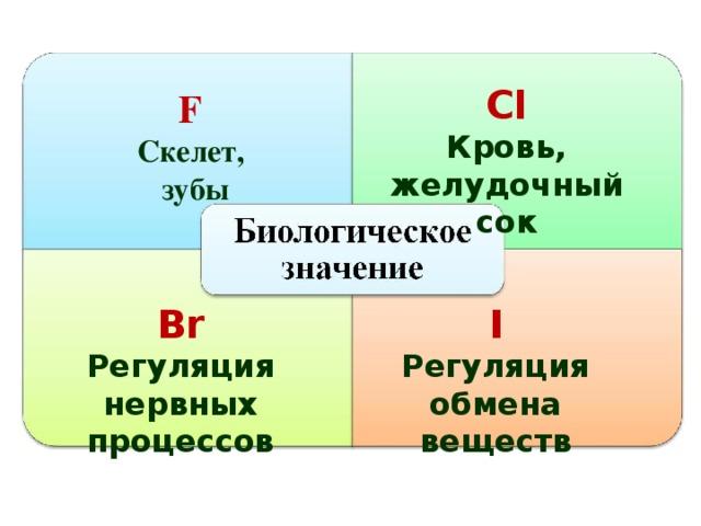 Сl Кровь, желудочный сок F  Скелет, зубы Br I Регуляция нервных процессов Регуляция обмена веществ