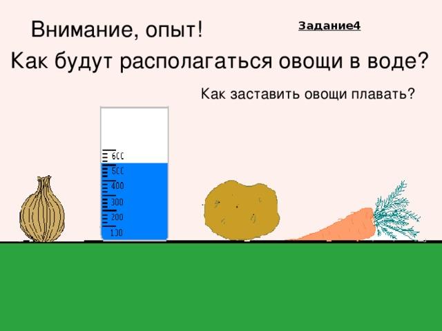 Внимание, опыт! Задание4 Как будут располагаться овощи в воде? Как заставить овощи плавать?