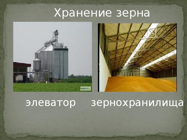 Элеваторы для хранения зерна презентация удлиненный транспортер размеры