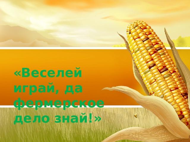 «Веселей играй, да фермерское дело знай!»
