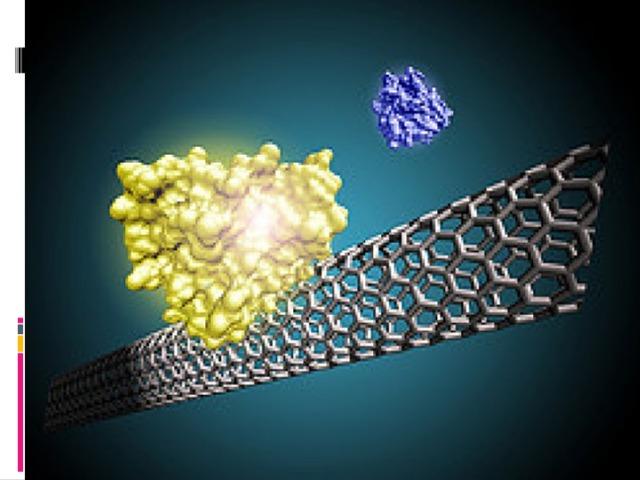 Развитие полипараметрической нанотехнологии функциональной и органной, в том числе морфологической диагностики, на основе интеллектуально-образных систем и когнитивной графики, а также нанокомпьютерных технологий управления функциональным состоянием организма человека