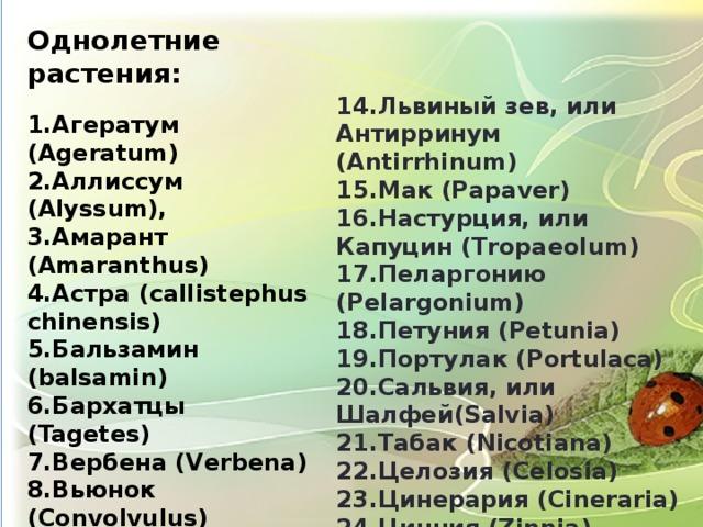 Однолетние растения:  1.Агератум (Ageratum) 2.Аллиссум (Alyssum), 3.Амарант (Amaranthus) 4.Астра (сallistephus chinensis) 5.Бальзамин (balsamin) 6.Бархатцы (Tagetes) 7.Вербена (Verbena) 8.Вьюнок (Convolvulus) 9.Душистый горошек (Lathyrus odoratus) 10.Иберис (Iberis) 11.Календула (Calendula) 12.Космея (Cosmos) 13.Лаватера (Lavatera)  14.Львиный зев, или Антирринум (Antirrhinum) 15.Мак (Papаver) 16.Настурция, или Капуцин (Tropaeolum) 17.Пеларгонию (Pelargonium) 18.Петуния (Petunia) 19.Портулак (Portulaca) 20.Сальвия, или Шалфей(Salvia) 21.Табак (Nicotiana) 22.Целозия (Celosia) 23.Цинерария (Cineraria) 24.Цинния (Zinnia) 25.Эшшольция (Eschscholzia)