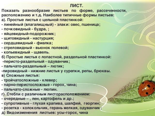 ЛИСТ. Показать разнообразие листьев по форме, рассеченности, расположению и т.д. Наиболее типичные формы листьев: а). Простые листья с цельной пластинкой: - линейный (влагалищный) - злаки: овес, пшеница; - почковидный - будра, ; - яйцевидный-подорожник; - щитовидный - настурция; - сердцевидный - фиалка; - стреловидный - вьюнок полевой; - копьевидный - щавель. б) Простые листья с лопастной, раздельной пластинкой:  -перисто-раздельный - одуванчик; - пальчато-раздельный – лютик; -лировидный - нижние листья у сурепки, репы, брюквы. в) Сложные листья: - тройчатосложные - клевер; - парно-перистосложные - горох, чина; - пальчато-сложные - люпин. г) Стебли с различным листорасположением: - очередные – , лен, картофель и др.; - супротивные - глухая крапива, шалфей, георгин; - розетка - колокольчик, герань мелкая, одуванчик; д) Видоизменения листьев: усы-горох, чина