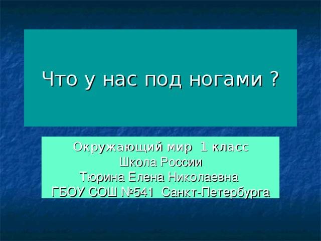 Что у нас под ногами ? Окружающий мир 1 класс Школа России Тюрина Елена Николаевна ГБОУ СОШ №541 Санкт-Петербурга