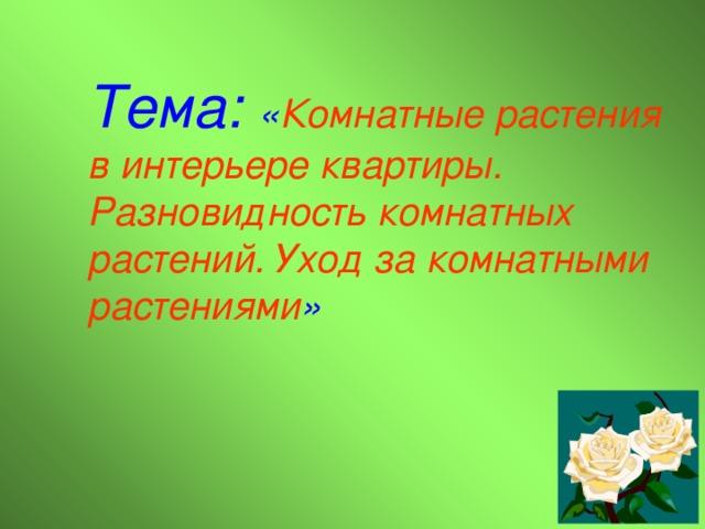 Тема:  « Комнатные растения в интерьере квартиры. Разновидность комнатных растений. Уход за комнатными растениями »