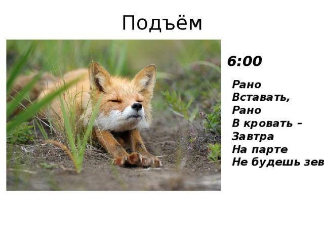Подъём 6:00 Рано  Вставать,  Рано  В кровать –  Завтра  На парте  Не будешь зевать .