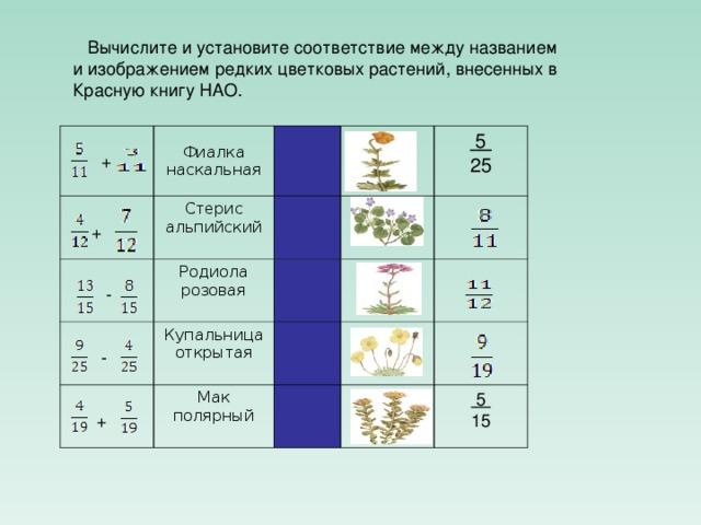 Вычислите и установите соответствие между названием и изображением редких цветковых растений, внесенных в Красную книгу НАО .  + Фиалка наскальная  +  - Стерис альпийский Родиола розовая  - Купальница открытая  +  5 25 Мак полярный  5 15