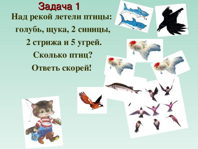 Задача 1  Над рекой летели птицы: голубь, щука, 2 синицы,  2 стрижа и 5 угрей.  Сколько птиц? Ответь скорей!
