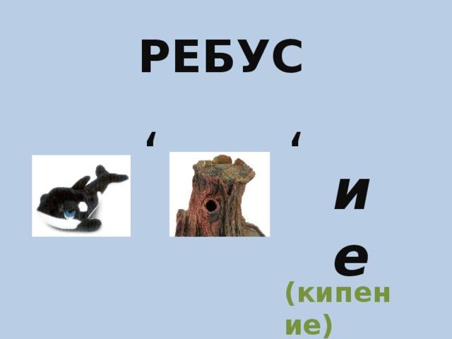 РЕБУС ' ' ие (кипение)