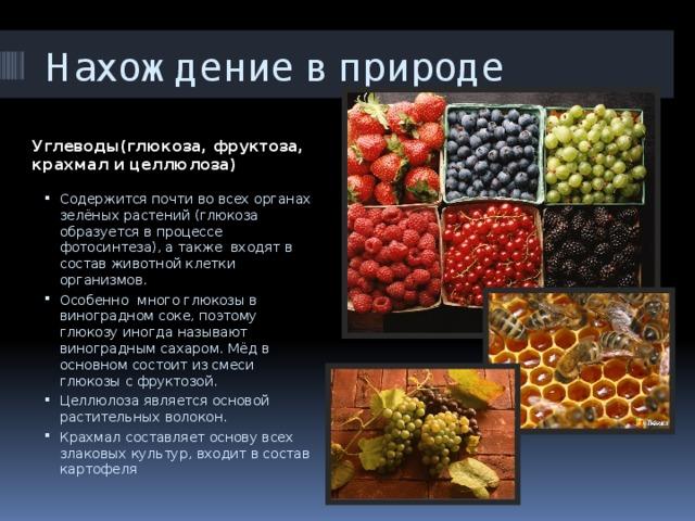 Нахождение в природе Углеводы(глюкоза, фруктоза, крахмал и целлюлоза)