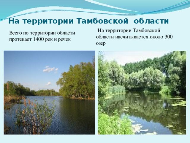 На территории Тамбовской области Всего по территории области протекает 1400 рек и речек  На территории Тамбовской области насчитывается около 300 озер