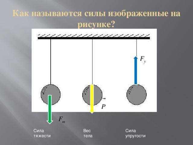 Как называются силы изображенные на рисунке? 1 2 3 Сила тяжести Вес тела Сила упругости
