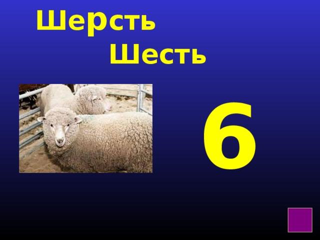 Ше р сть  Шесть 6