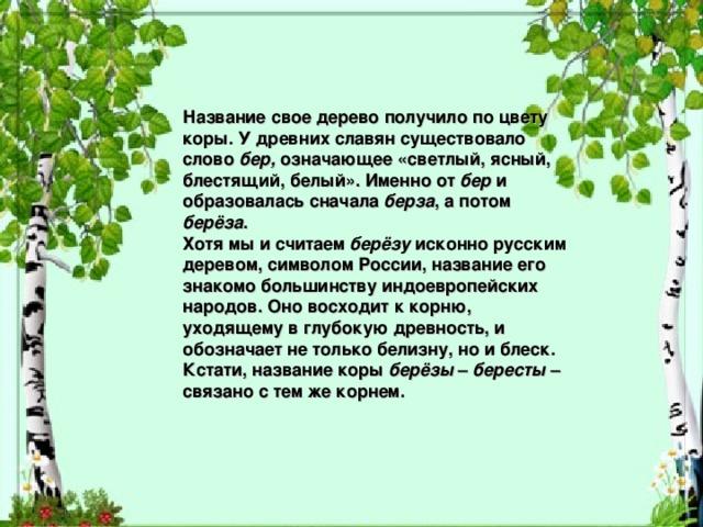 Название свое дерево получило по цвету коры. У древних славян существовало слово бер, означающее «светлый, ясный, блестящий, белый». Именно от бер и образовалась сначала берза , а потом берёза . Хотя мы и считаем берёзу исконно русским деревом, символом России, название его знакомо большинству индоевропейских народов. Оно восходит к корню, уходящему в глубокую древность, и обозначает не только белизну, но и блеск. Кстати, название коры берёзы – бересты – связано с тем же корнем.